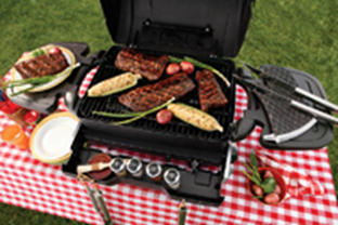 Freedom Grill FG-50 From Tailgate to Tabletop